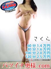 桜(さくら)  (刺激が欲しい♪)