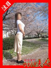広瀬奈々美  (ドMな綺麗系熟女)