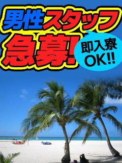 ◆男性スタッフ急募!即入寮OK!  (男子急募)