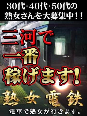 熟女電鉄 電車で熟女が行きます。刈谷駅発車