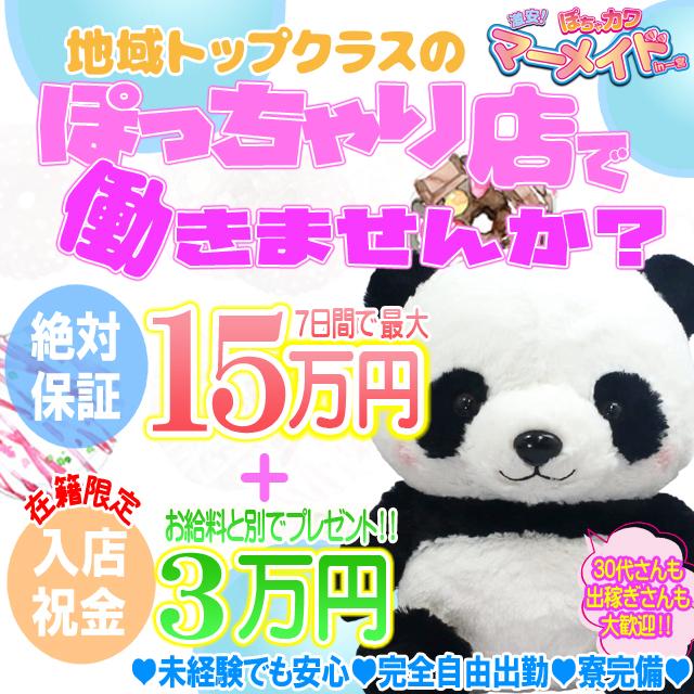 激安!ぽちゃカワ専門マーメイドin総合