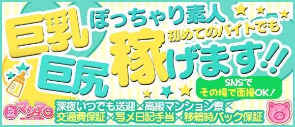 ぽちゃカワ専門店 マシュマロ